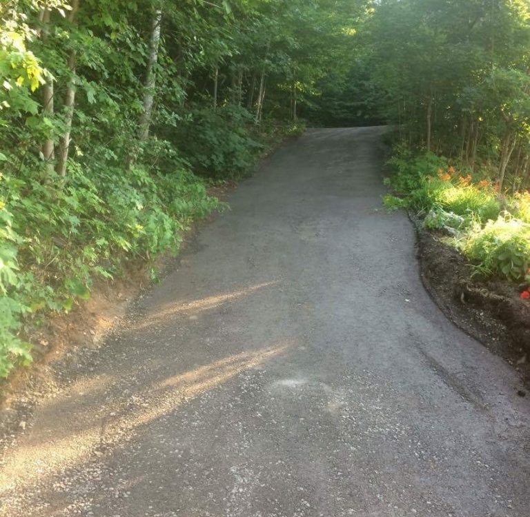 Chemin de cabane